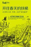 天池山・东1号广告欣赏|天池山广告欣赏(4.19)