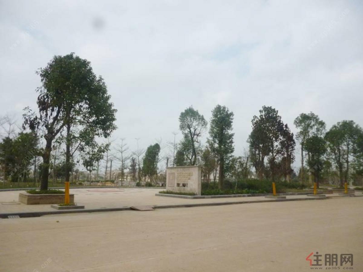 城建·湖景花园园林实景图