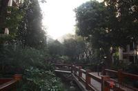 御林皇府实景图|2013.11.29实景图
