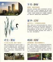 香樟林广告欣赏 2013.08.10香樟林宣传折页1