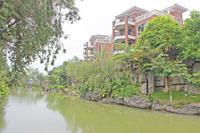 八桂绿城实景图 八桂绿城实景欣赏