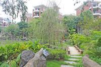 八桂绿城实景图|八桂绿城实景欣赏
