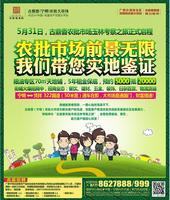 古鼎香(宁明)农批大市场广告欣赏|广告欣赏