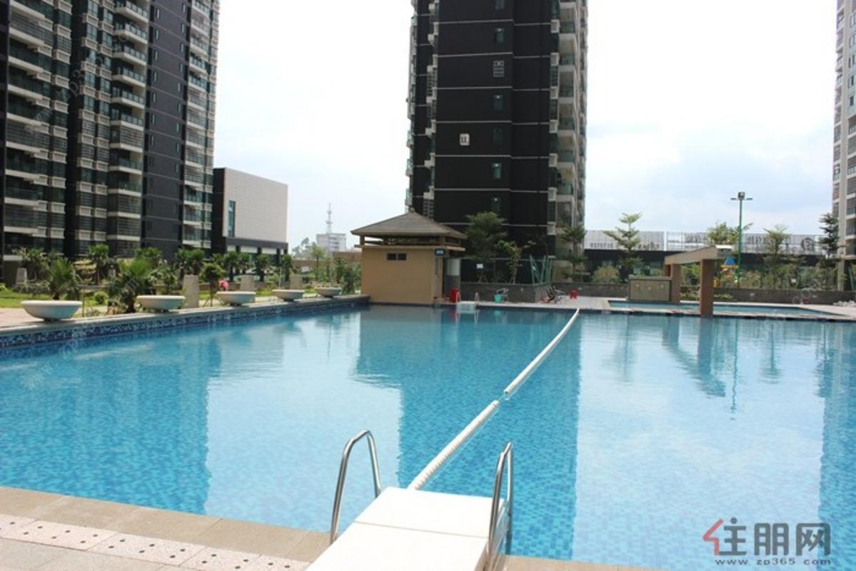 项目大气游泳池