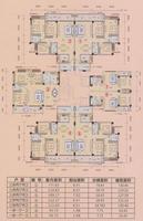 5栋户型平面图