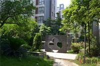 碧园南城故事实景图|小区园林