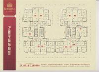 2#楼平面布局图
