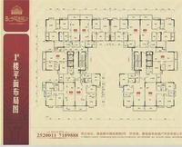 1#楼平面布局图