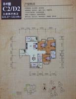 8#楼C2/D2户型