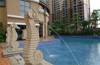 云星钱隆江南实景图|泳池一角