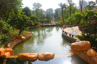 柳州恒大翡翠龙庭实景图|园林实景图