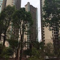 容州新城实景图|QQ图片20160527142346