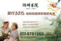 天晟・湖畔书院广告欣赏|优惠活动宣传页