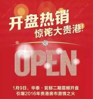 华泰官邸广告欣赏|207597008609176