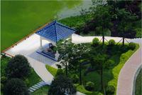 钦州恒大绿洲实景图 项目实景图