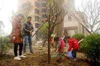 华泰官邸活动图片|植树节3