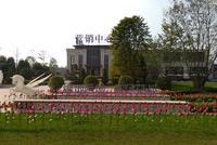 绿地西城国际花都实景图|实景图