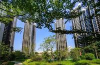 柳州荣和千千树实景图|实景图