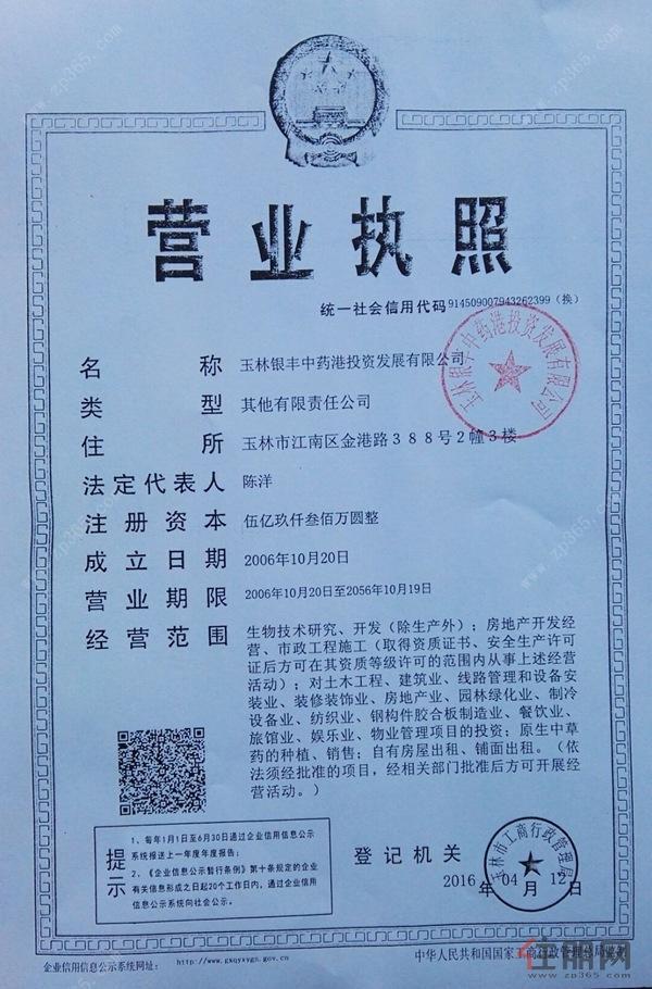 银丰中央首府营业执照