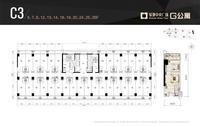 绿地中央广场G公寓C3户型(2)1室0厅1卫38.00�O