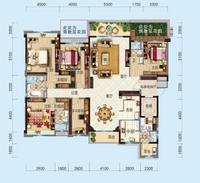 洋房   262平米