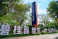 南宁碧桂园・天悦湾实景图|园林实景