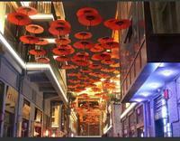江南新天地实景图|民族特色商业街