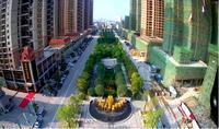 银丰中央首府实景图|城市景观绿轴