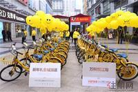 万科悦江南活动图片|城市展厅开放现场