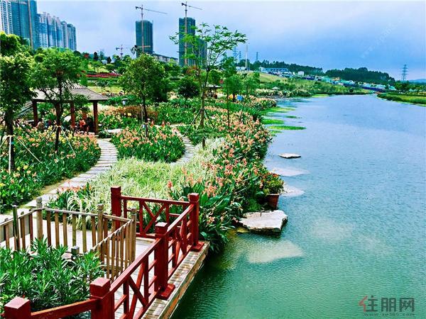 中海九玺那考河湿地公园