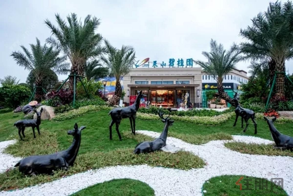 灵山碧桂园 实景图