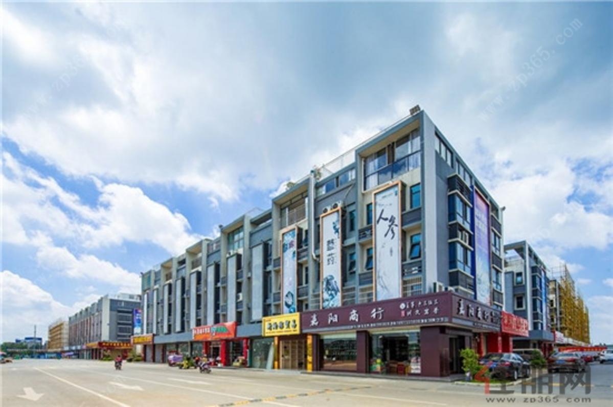新柳邕·海吉星 市场实景图