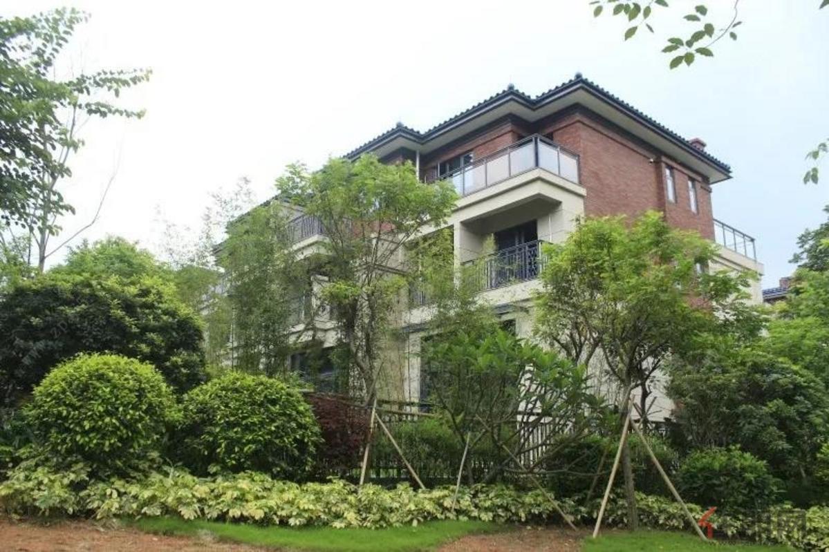 华标·峰湖御境 实景图