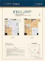 C1户型 3房2厅2卫