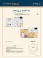 C2户型 2房2厅2卫