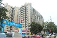 华南城・东盟华府实景图|18#公寓楼(2018.02)