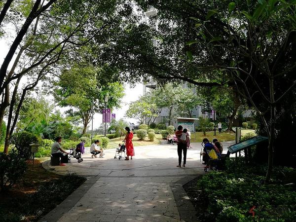 项目内公园实景图