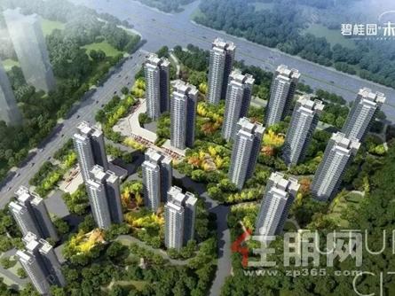 碧桂园·未来城