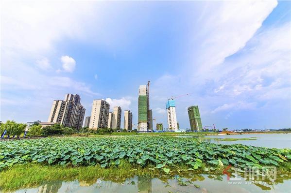 鹿寨碧桂园鹿鸣湖1號实景图