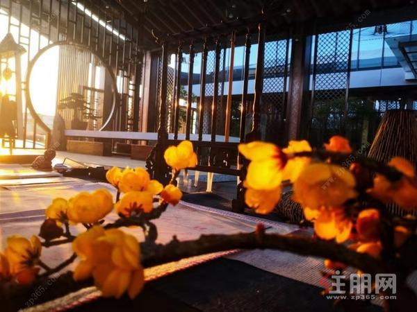 五象瀾庭府實景圖