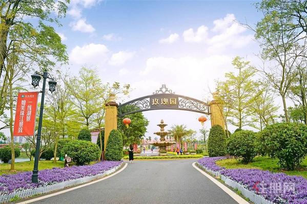 梧州彰泰·玫瑰园实景图