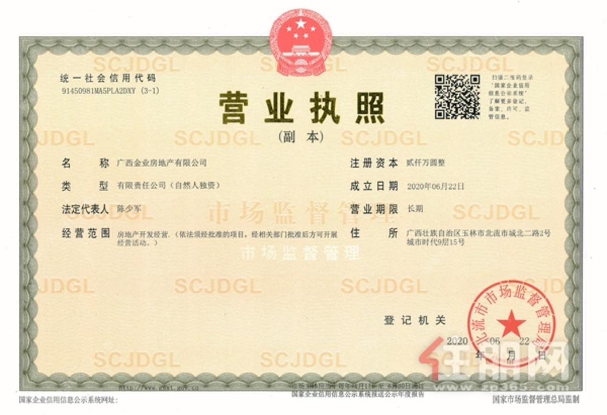 项目营业执照