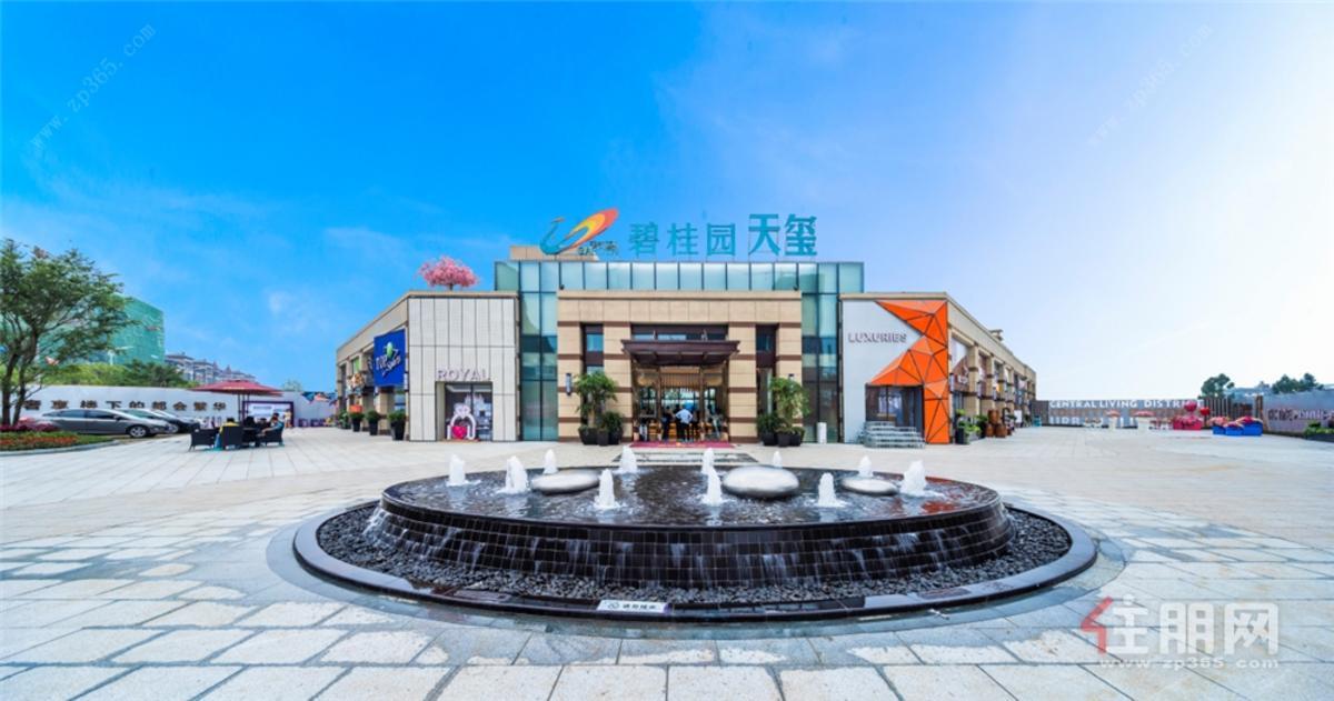 碧桂园天玺实景图
