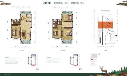 洋房D1戶型