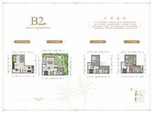 别墅B2户型