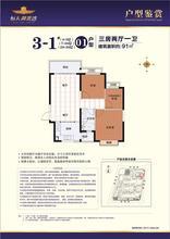 3-1#01户型