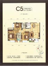 宋都江韵朝阳C5户型