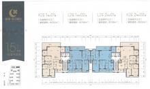 15#楼标准平面图
