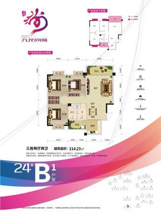 24#B1户型