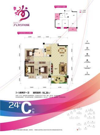 24#C户型
